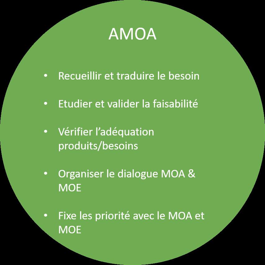 AMOA Definition